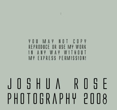 JRose-Photography's Profile Picture