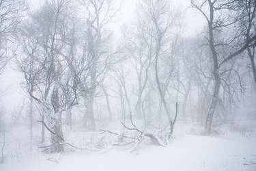 Blizzard 2 by obsession-stock