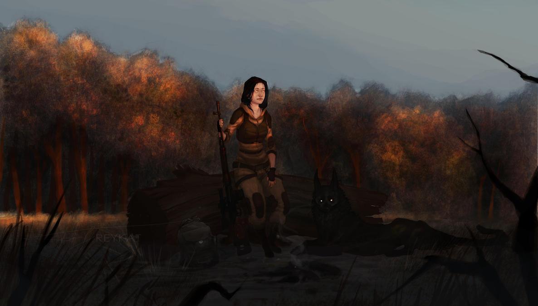 http://pre12.deviantart.net/bd7f/th/pre/i/2012/236/9/c/__i_hate_sunsets__by_reykat-d5c7xwu.jpg