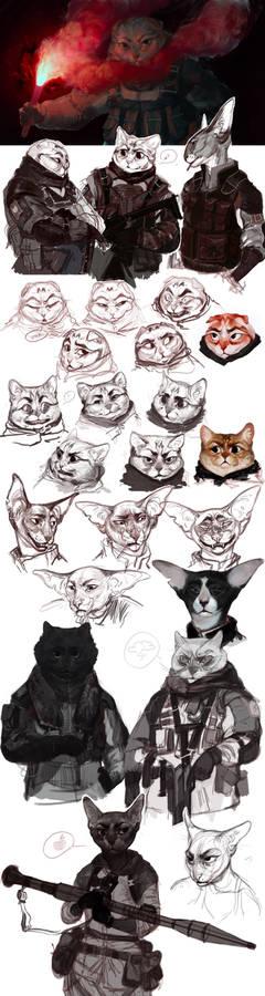 Tactic CATs