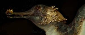 gold pangolin by REYKAT