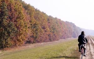 colours of autumn by krumplicsengo