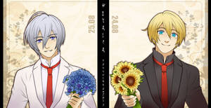 Cornflowers  Sunflowers