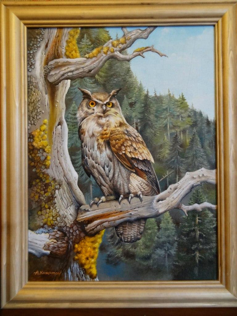Owl by Anubiscomics