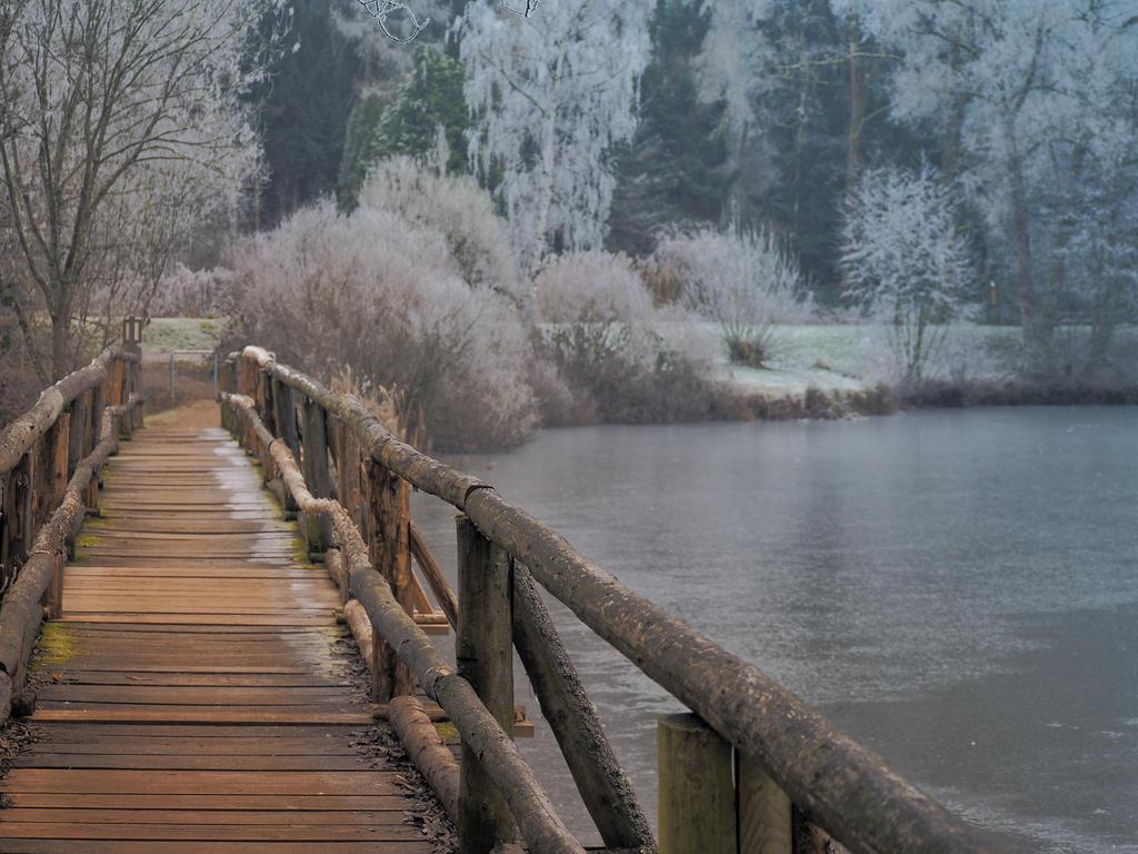 -bridge- by ML-Photography99