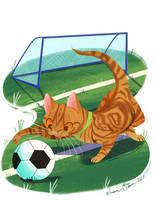 Bo-Cat Commission by JessieDrawz