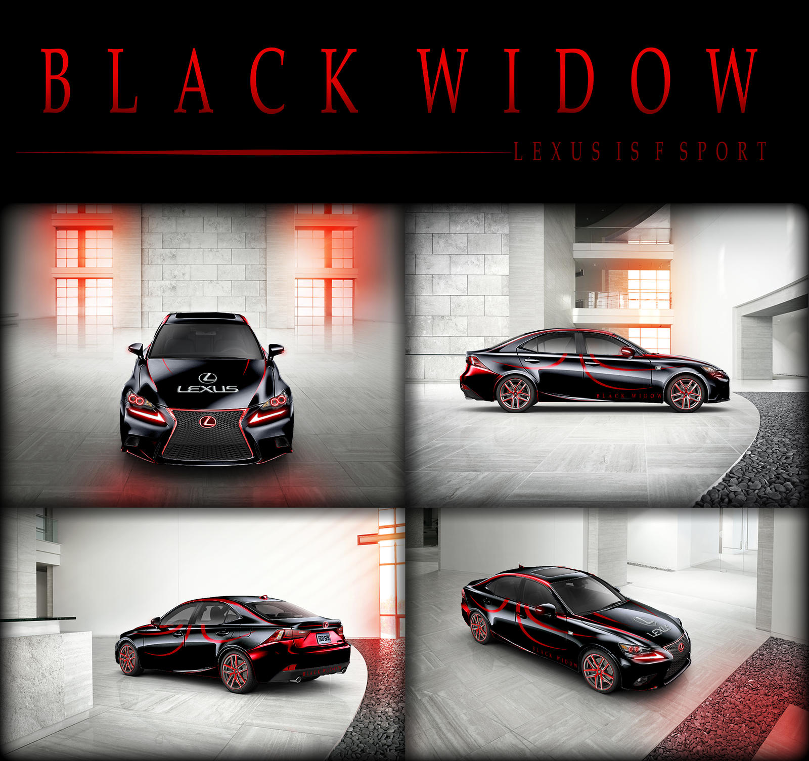 The Black Widow by Dioxim
