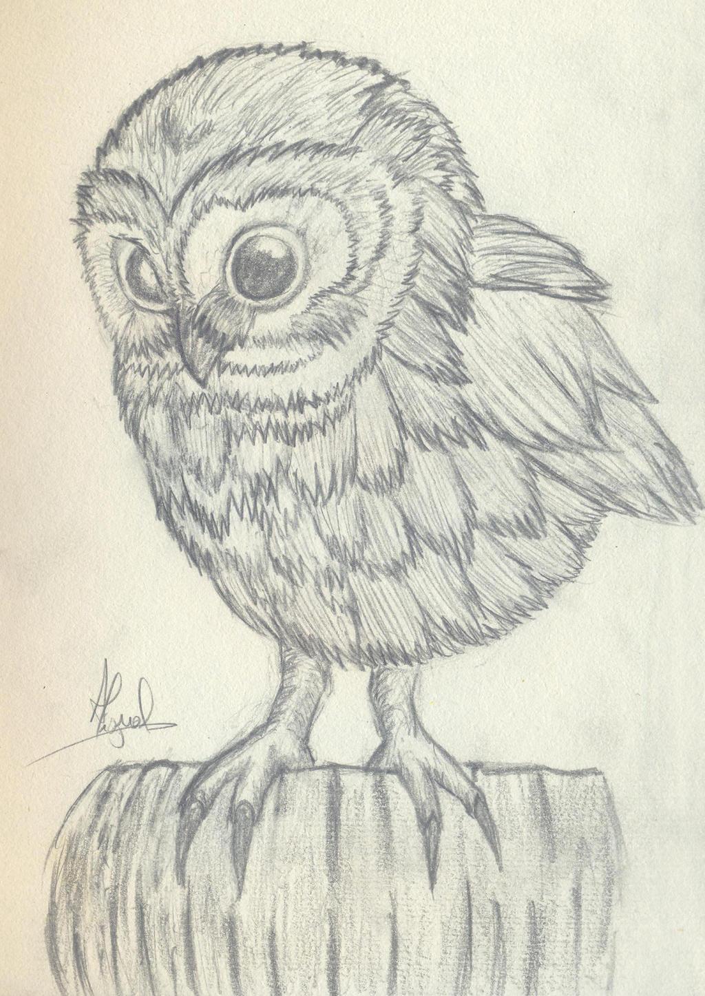 Baby Owl by WellSinisterART
