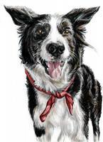 Nice doggy (coloured)