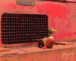 Crane Duck by Pooleside