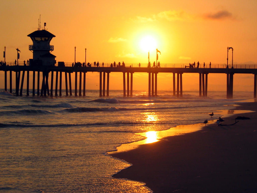 huntington beach chat Free shipping - use code saltydad follow us account login register   wishlist rewards chat support contact us faqs shipping returns.