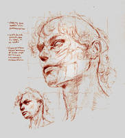 Anatomy Face Study by SILENTJUSTICE