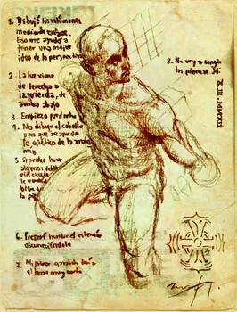 Quick anatomy sketch