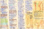 Anatomy notes 9