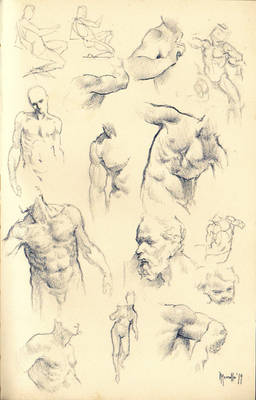 Anatomy sketches A