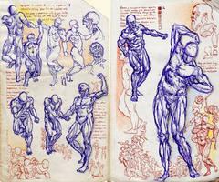 A studies 201119 c