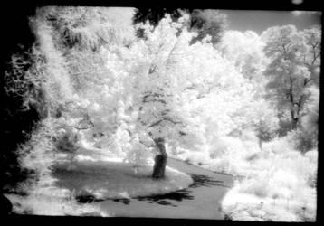 Infrared 190707-4