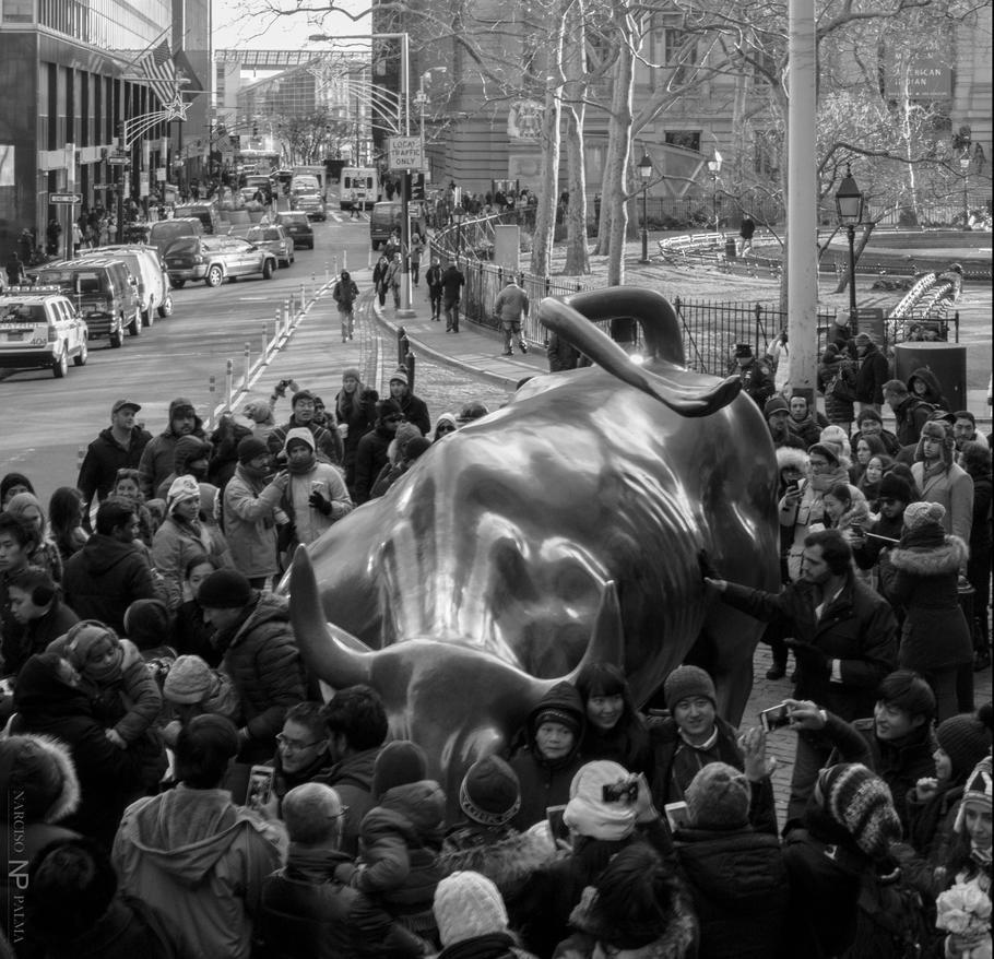 Wall Street Bull Fight by NarcisoPalma