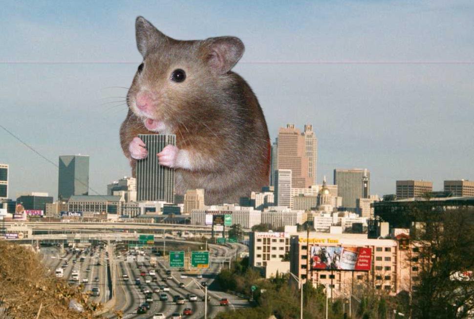 Giant hamster invades Atlanta by Skyshroud3