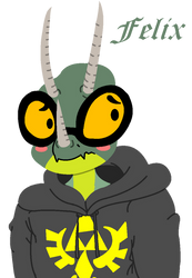 Felix the Chameleon by SmuglyOtaku