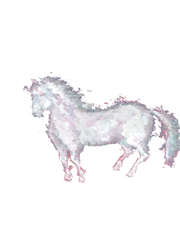 Pony by wojtekkowalski58