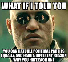 What if I told you you can hate political parties
