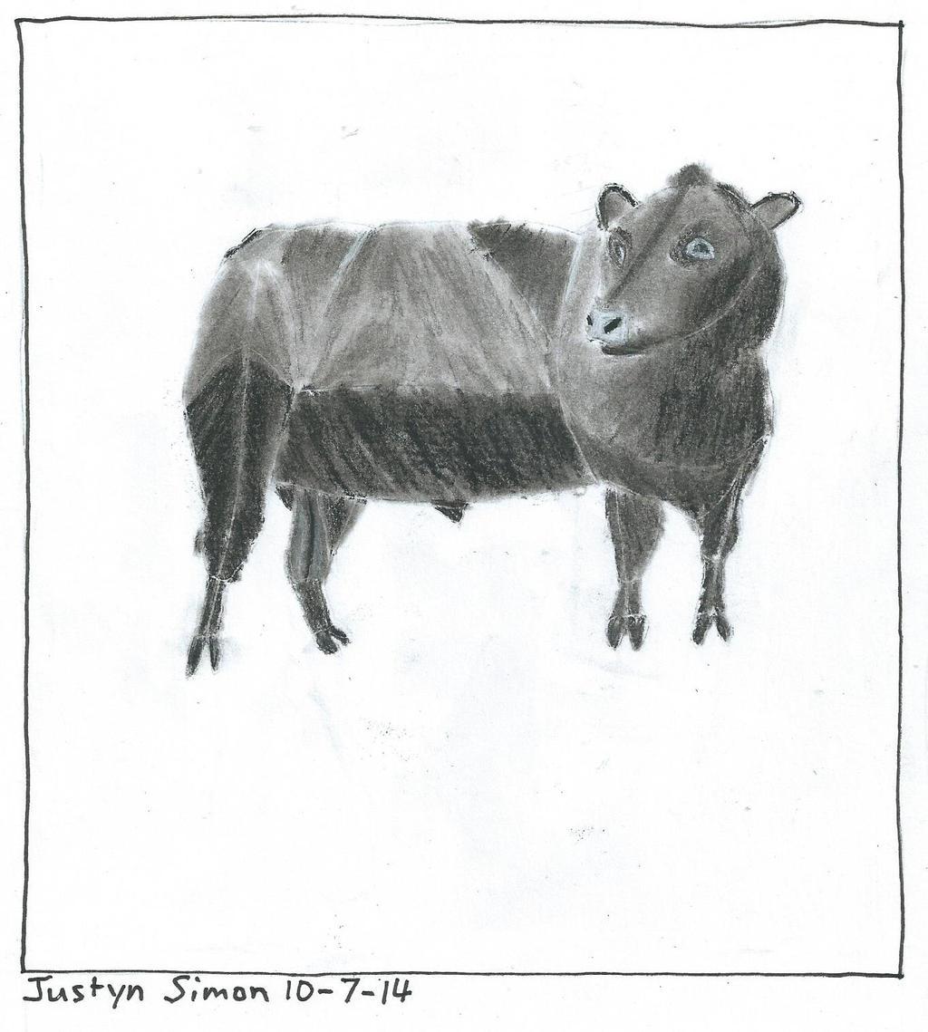 Angus bull by Justyn16