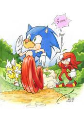 Run, Sonic, run! by FinikArt