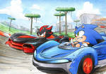 Team Sonic Racing by FinikArt