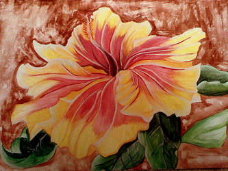 Hibiscus finished by ejlia