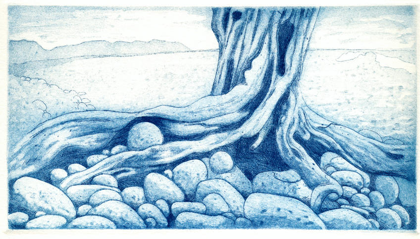 beach stump by ink5000