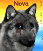 Nova - Avatar by Str0ngwolf