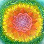 mandala 57 colored