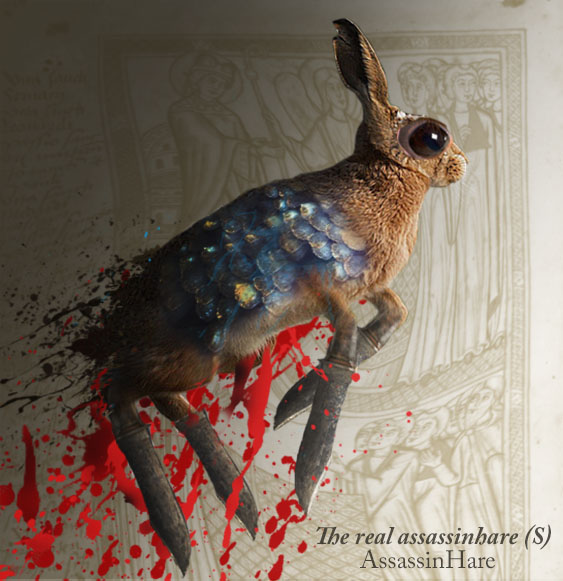 The real assassinhare (S) by AssassinHare
