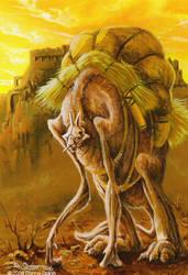 Citadel of Bam by donnaquinn