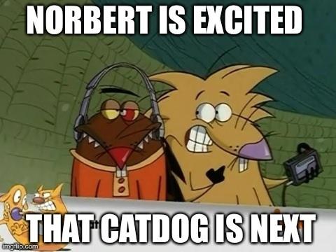 Winslow Catdog Meme 29039 Pixhd