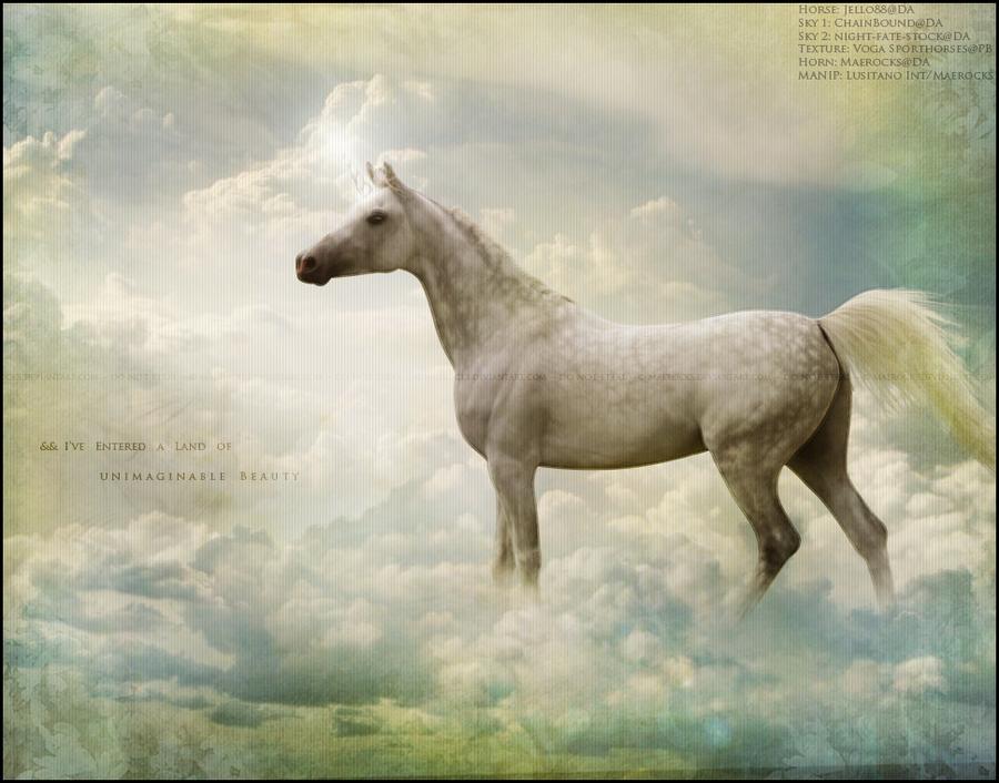 Unimaginable Beauty by maerocks on DeviantArt
