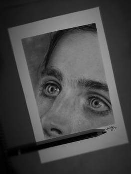 Timothee Chalamet realistic pencil drawing