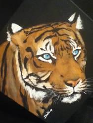 Tiger by Boosue