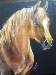 Horse by Boosue