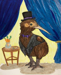 Gentleman Kiwi
