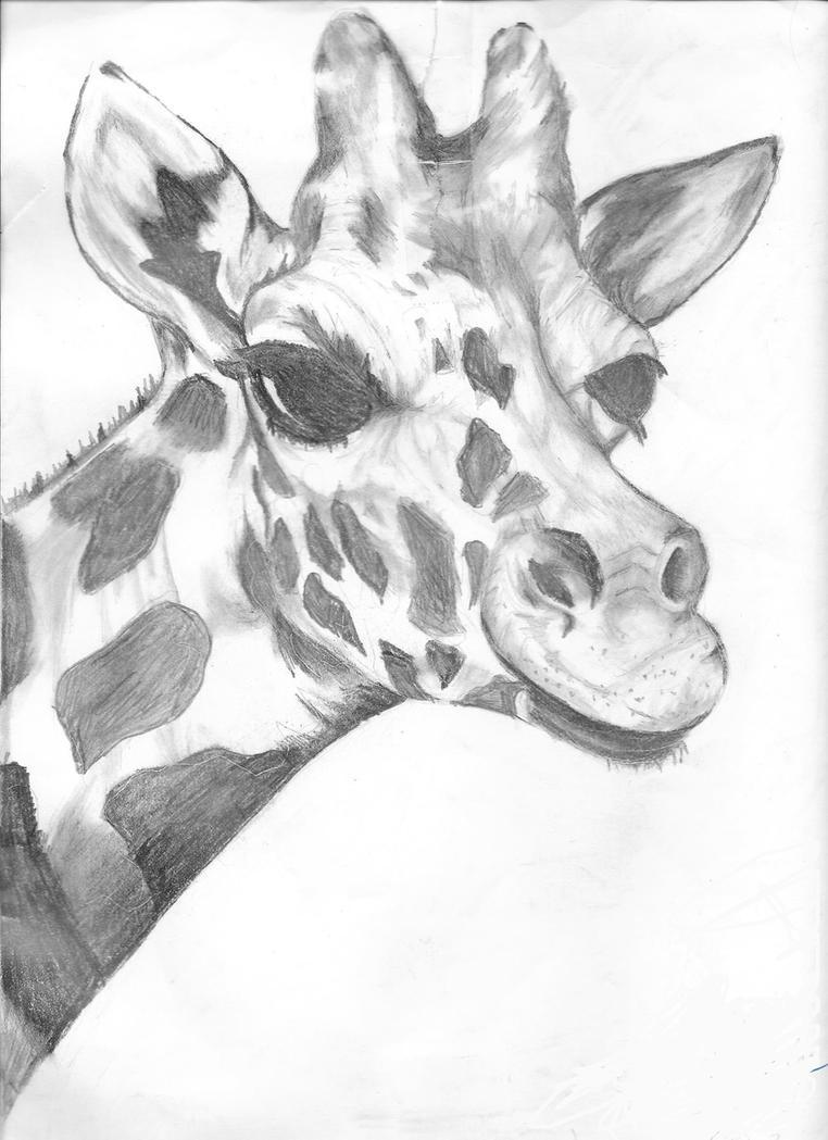 Giraffe. by rainbowthefox