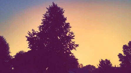 Orange Sky by Icyryujin