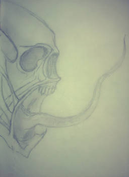 Skeletal Creature Sketch