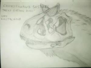 Carnotaurus Sastrei Sketch