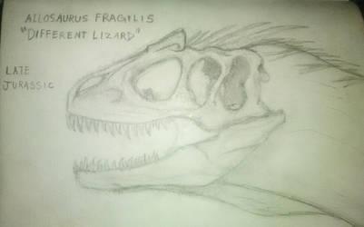 Allosaurus Fragilis Sketch