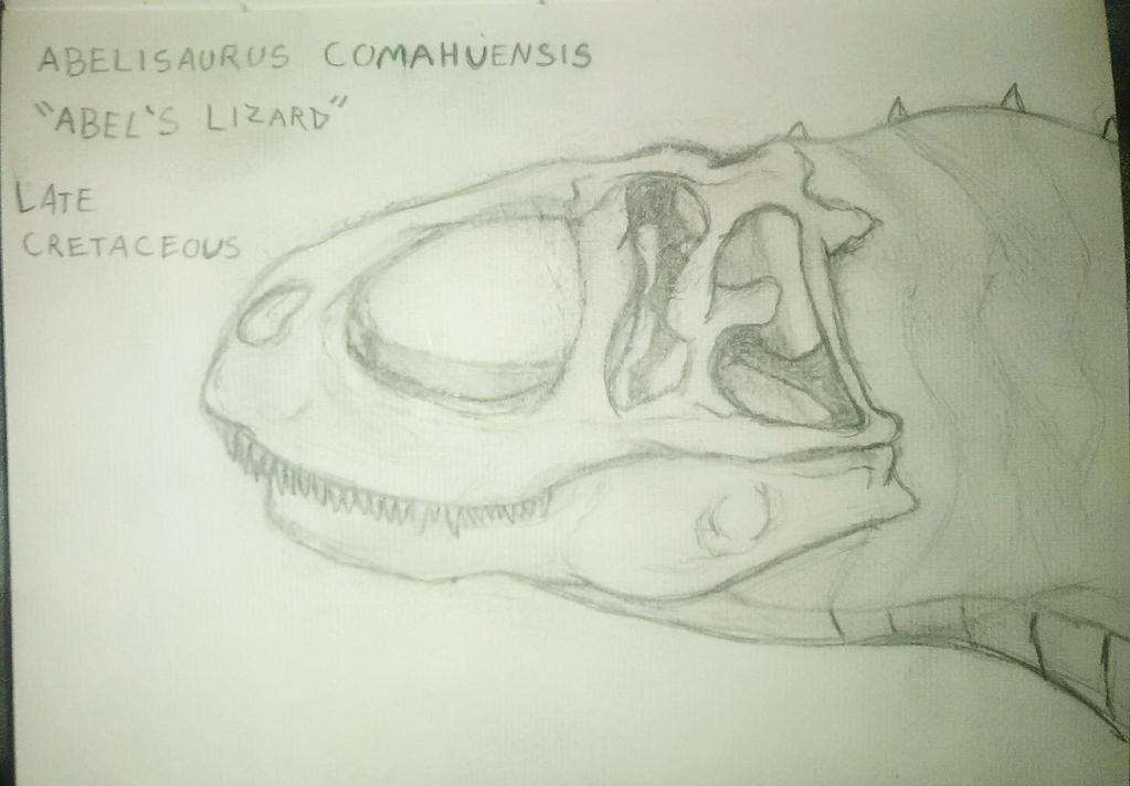 Abelisaurus Comahuensis by justinedavis426