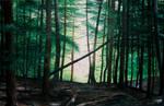 Camp Woods