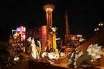Wild Persian w/Meowth encounter Zigzagoon in Vegas
