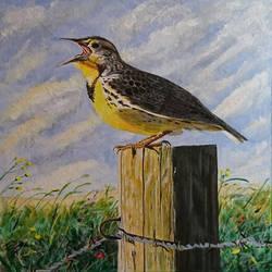 Meadowlark II